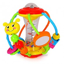 HOLA Baby Toys 6 to 12 Months Baby Rattles Activity Ball Shaker Grab and Spin Rattle Crawling Educational Toys for 3 6 9 12 Months Baby Infant Boys Girls